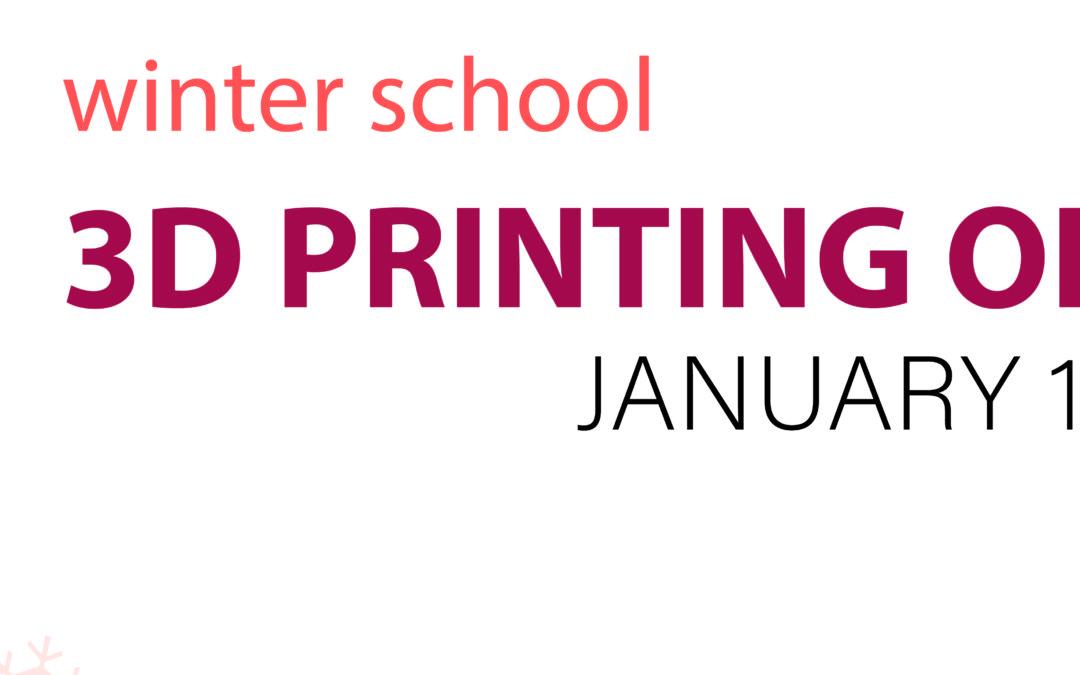 Winter School in 3D Printed metals